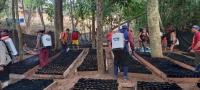 Google saluda a Bolivia en su aniversario